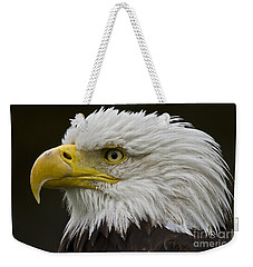 Bald Eagle - 7 Weekender Tote Bag