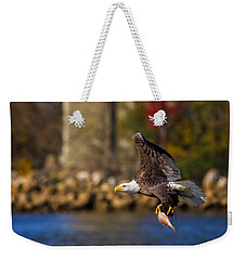 Bald Eagle In Flight Over Water Carrying A Fish Weekender Tote Bag