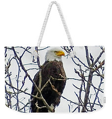 Weekender Tote Bag featuring the photograph Bald Eagle  by Lizi Beard-Ward