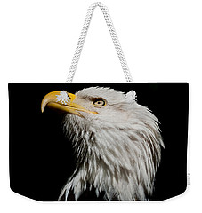 Bald Eagle Looking Skyward Weekender Tote Bag