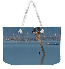 Bald Eagle Pair Weekender Tote Bag by Paul Rebmann