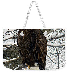 Weekender Tote Bag featuring the photograph Bald Eagle by Penny Meyers