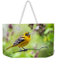 Baltimore Oriole II Weekender Tote Bag by Christina Rollo