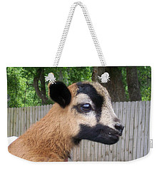 Weekender Tote Bag featuring the photograph Bambi by Belinda Lee