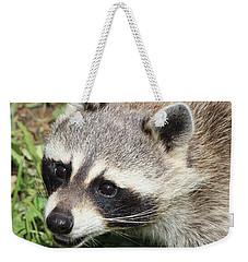 Bandit Weekender Tote Bag by Tiffany Erdman