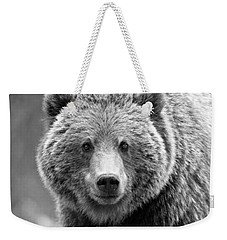 Banff Grizzly In Black And White Weekender Tote Bag