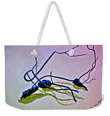 Weekender Tote Bag featuring the painting Banksia Abstraction by Leanne Seymour
