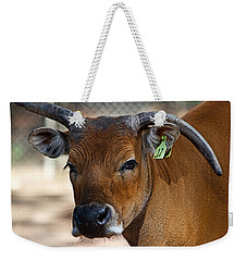 Banteng Girl Weekender Tote Bag by Miroslava Jurcik