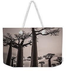 Baobab Avenue Weekender Tote Bag