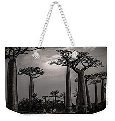 Baobab Highway Weekender Tote Bag