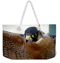 Barbary Falcon Wings Stretched Weekender Tote Bag