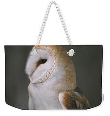 Barn Owl Weekender Tote Bag by David Porteus