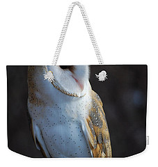 Weekender Tote Bag featuring the photograph Barn Owl by Sharon Elliott