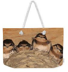 Barn Swallow Chicks 2 Weekender Tote Bag