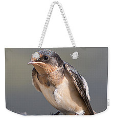 Barn Swallow On Rope I Weekender Tote Bag by Patti Deters