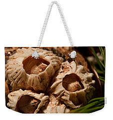Barnacles Weekender Tote Bag by WB Johnston