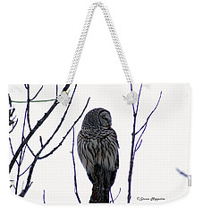 Barred Owl 3  Weekender Tote Bag by Steven Clipperton