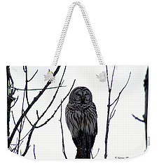 Barred Owl 4 Weekender Tote Bag by Steven Clipperton