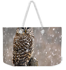 Barred Owl In A New England Snow Storm Weekender Tote Bag