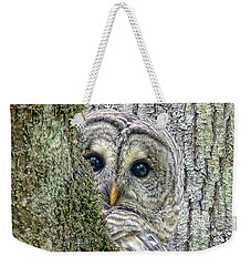 Barred Owl Peek A Boo Weekender Tote Bag by Jennie Marie Schell