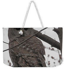 Weekender Tote Bag featuring the photograph Barred Owl Perched by Emmy Marie Vickers