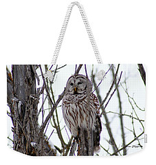 Barred Owl Weekender Tote Bag by Steven Clipperton