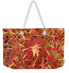 Weekender Tote Bag featuring the photograph Barrel Cactus by Laurel Powell