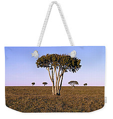 Barren Tree Weekender Tote Bag