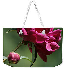 Basking In The Sun Weekender Tote Bag by Barbara Bardzik