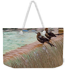 Weekender Tote Bag featuring the photograph Bath Time At The Adolphus by Robert ONeil