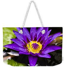 Bayou Beauty Weekender Tote Bag