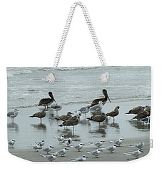 Weekender Tote Bag featuring the photograph Beach Birds by Judith Morris