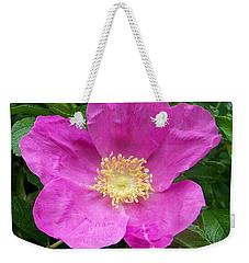 Pink Beach Rose Fully In Bloom Weekender Tote Bag