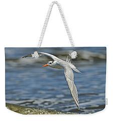 Beach Tern Weekender Tote Bag