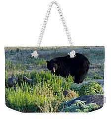 Bear 3 Weekender Tote Bag
