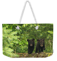 Weekender Tote Bag featuring the photograph Bear Buddies by Coby Cooper