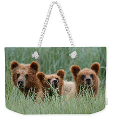 Bear Cubs Peeking Out Weekender Tote Bag by Myrna Bradshaw