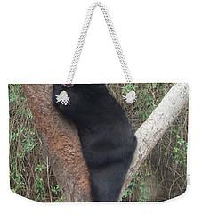 Bear In Tree   Weekender Tote Bag