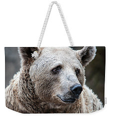 Bear Necessities Weekender Tote Bag by Ray Warren