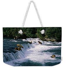 Bears Fish Brooks Fall Katmai Ak Weekender Tote Bag by Panoramic Images