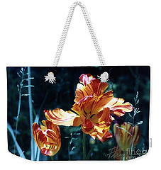 Weekender Tote Bag featuring the photograph Gorgeous Tulip by Phyllis Kaltenbach