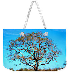Weekender Tote Bag featuring the photograph Beautiful Branching by Debra Martz