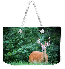 Beautiful Buck  Weekender Tote Bag