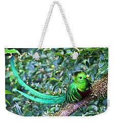 Beautiful Quetzal 3 Weekender Tote Bag