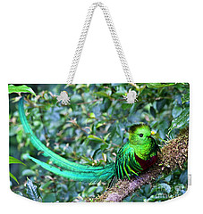 Beautiful Quetzal 3 Weekender Tote Bag