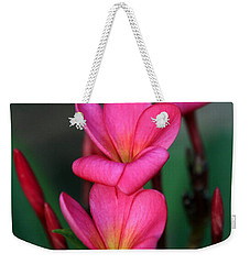 Beautiful Red Plumeria Weekender Tote Bag