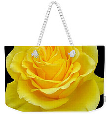 Beautiful Yellow Rose Flower On Black Background  Weekender Tote Bag by Tracey Harrington-Simpson