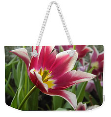 Beauty Within Weekender Tote Bag by Lingfai Leung