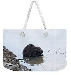 Beaver In The Shallows Weekender Tote Bag by Chris Flees
