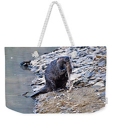 Beaver Sharpens Stick Weekender Tote Bag